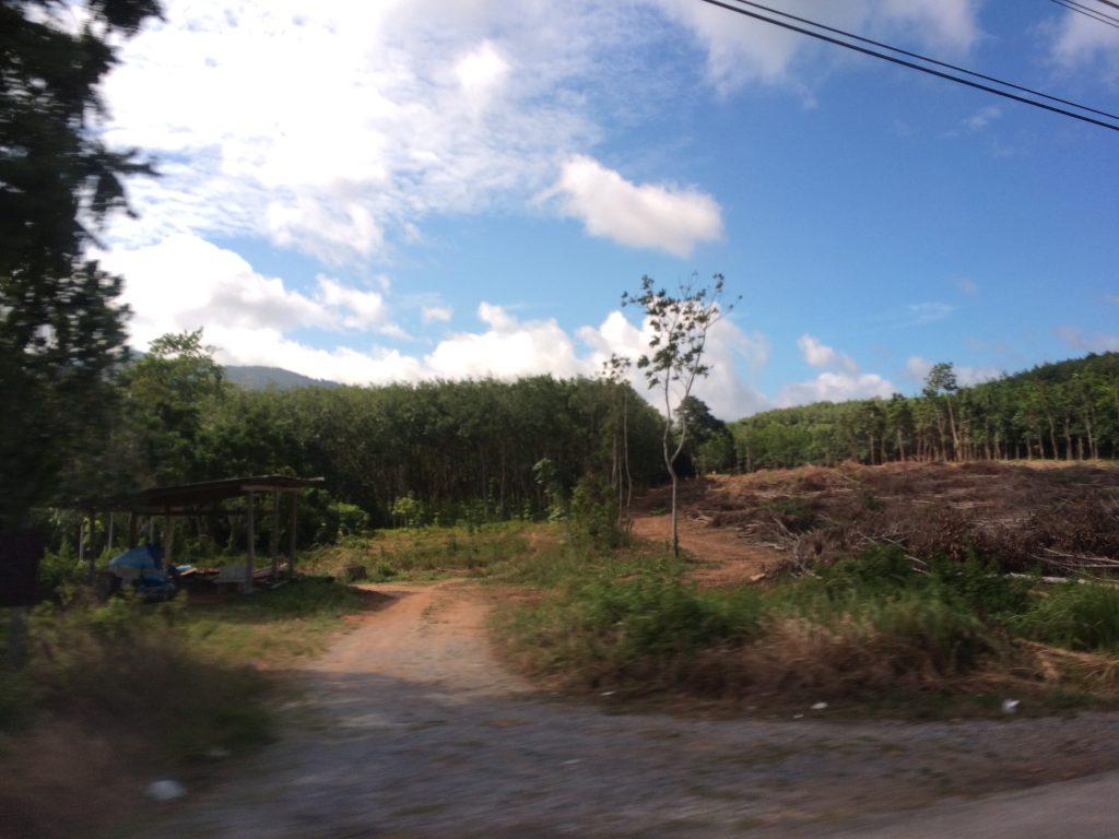 ミニバンからの景色