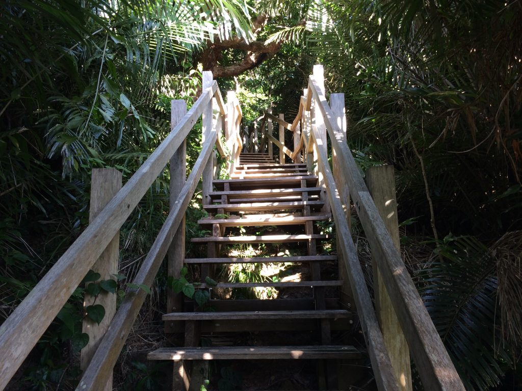 遠見台の階段