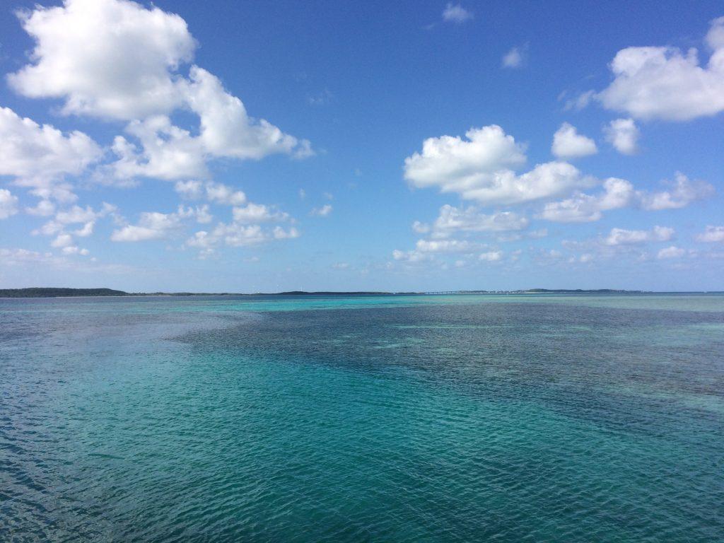 大神港から見る海