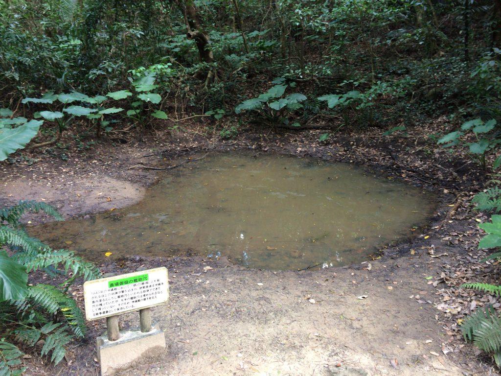 沖縄戦の砲弾で出来た穴(池)