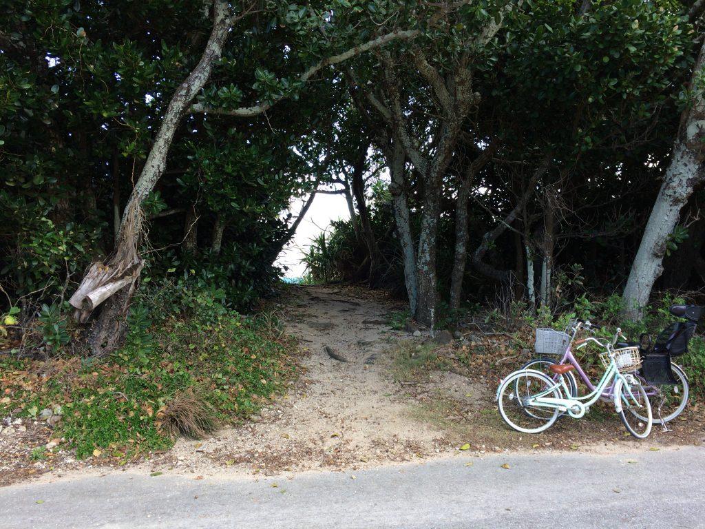 ピザ浜へと続く小道