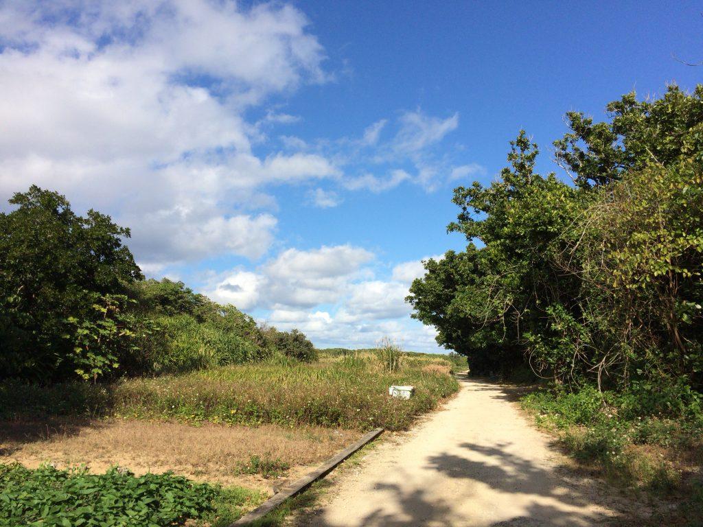 久高島の田舎道を進む