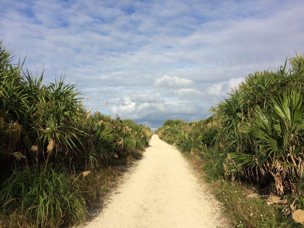 カベール岬へと続く一本道