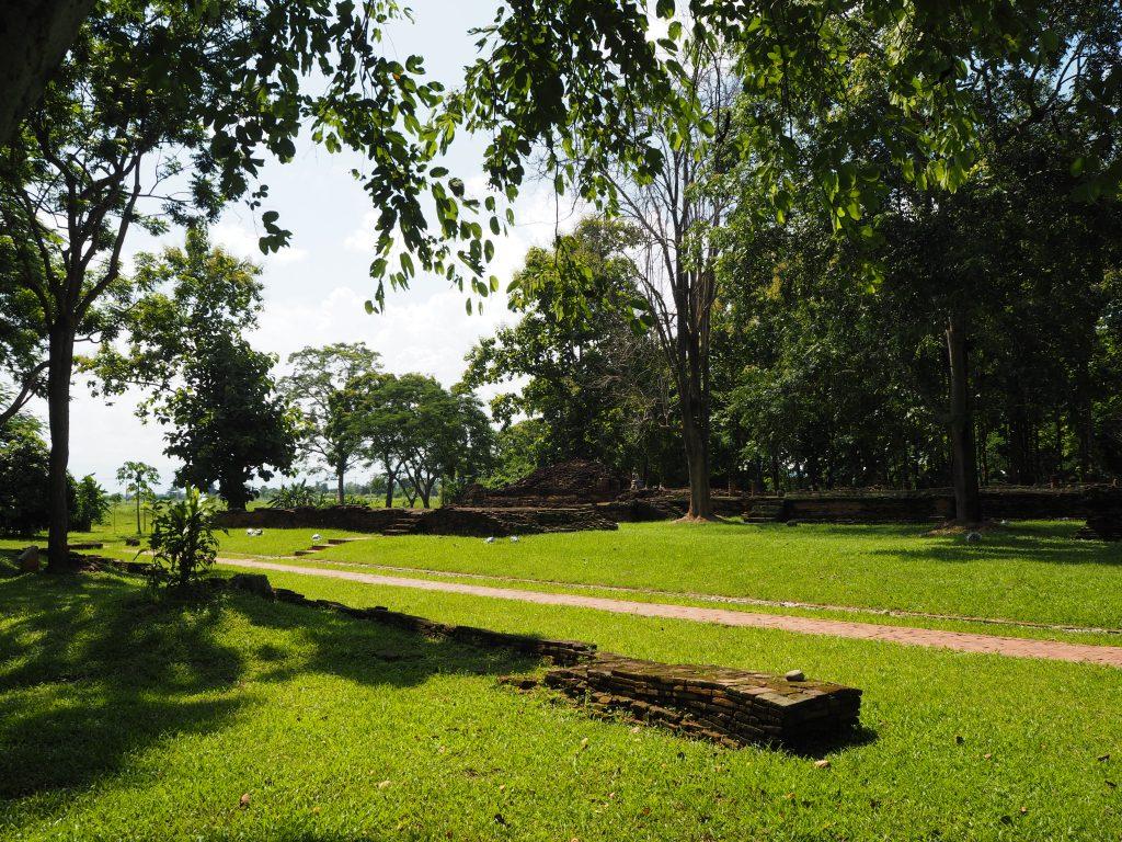 草むらに寺院跡が点在する