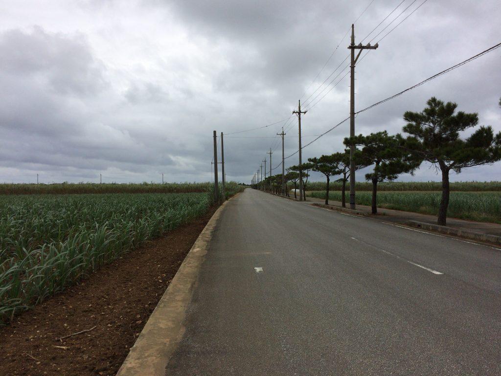 多良間島の道路を走る