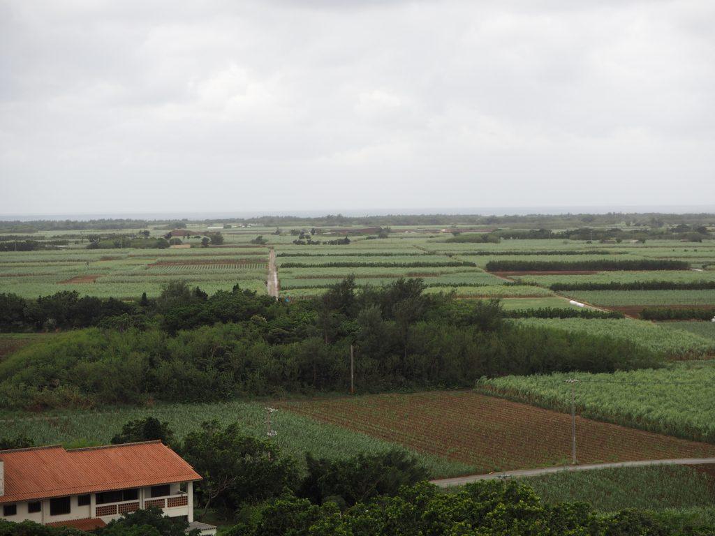 展望台からの眺め(西方)