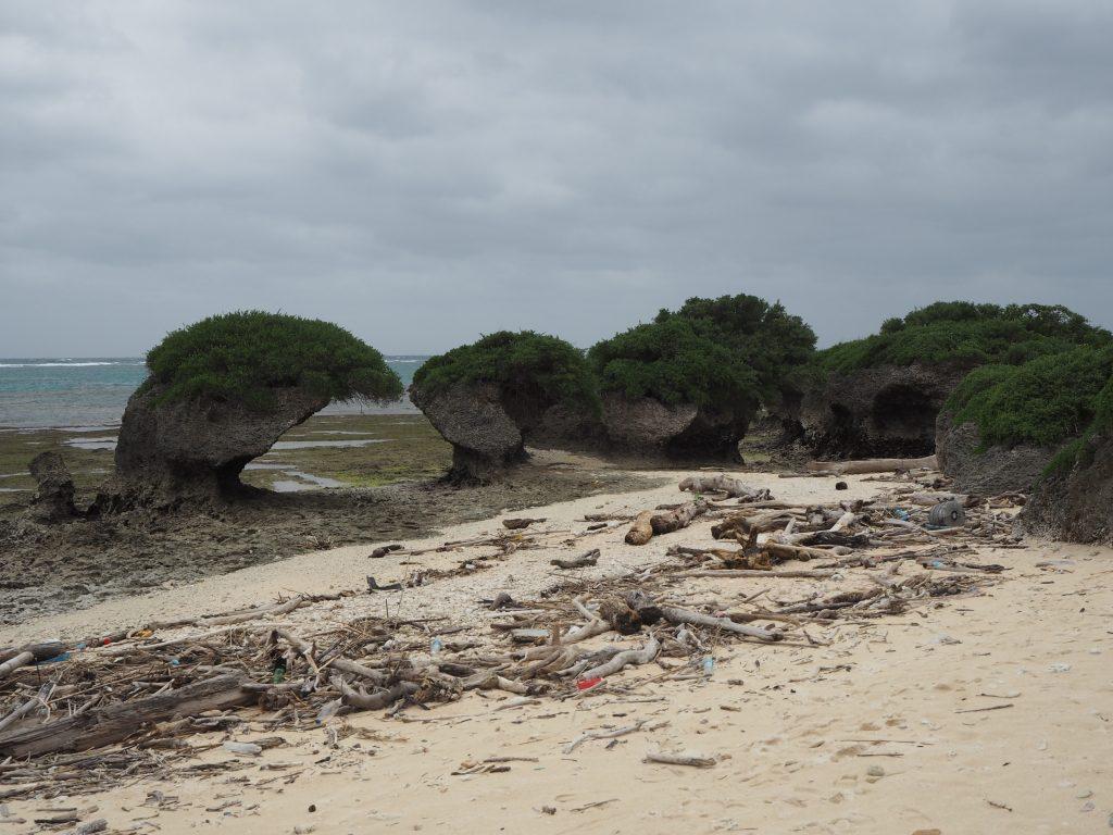 浸食された岩が立ち並ぶ