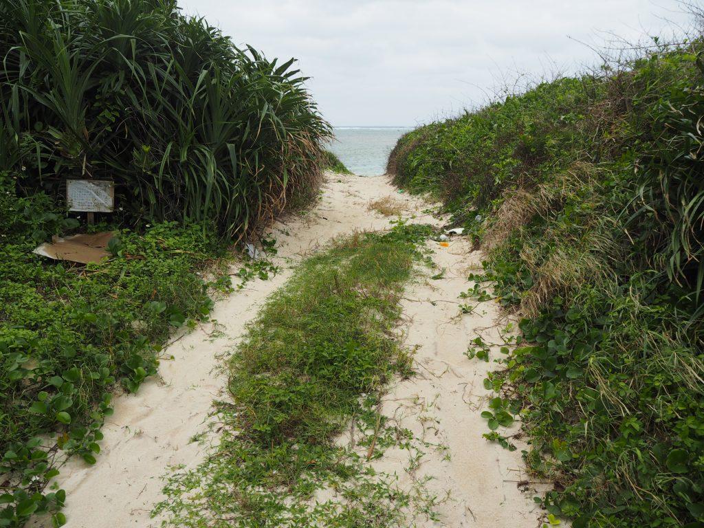 砂の道を進む