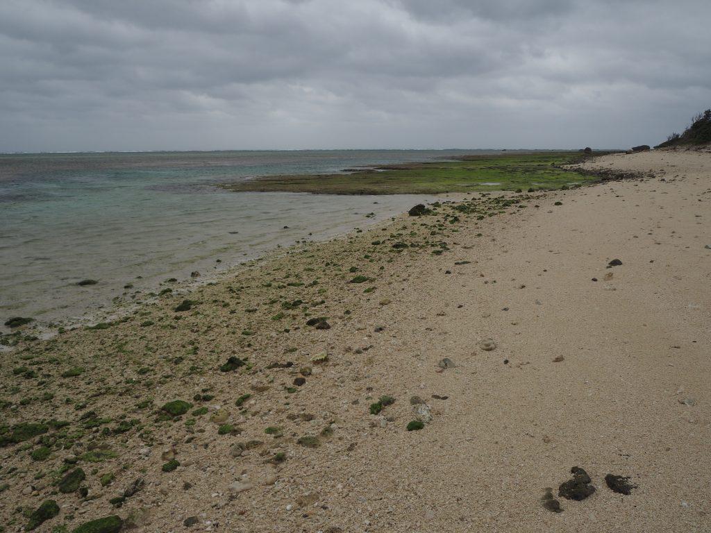 平坦なビーチだ