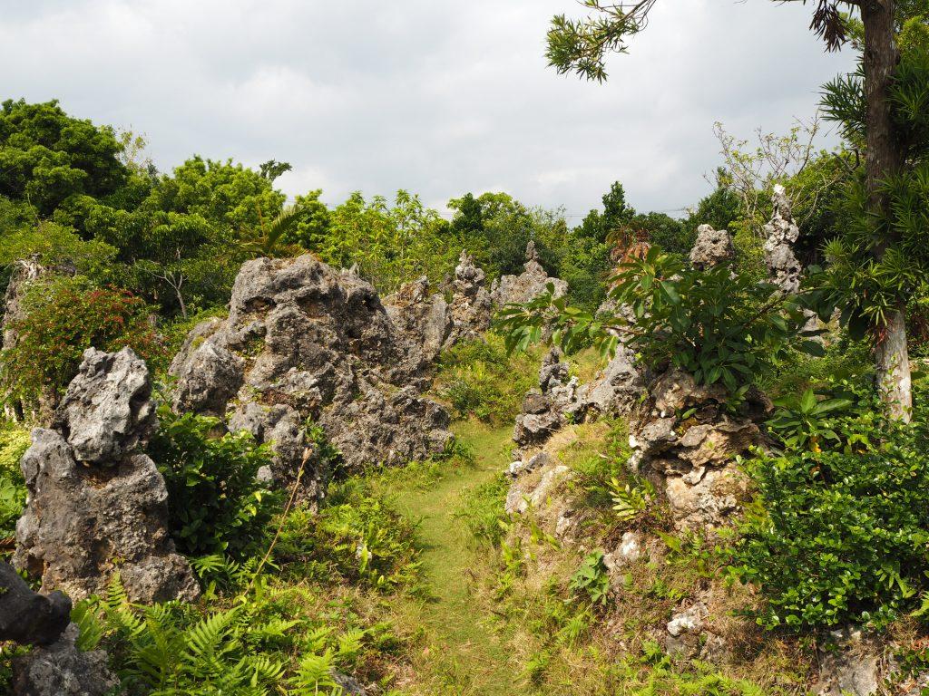 様々な石が並べられた石庭