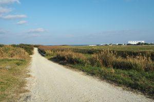 空港の滑走路に沿って伸びる白い道(ホワイトロード)