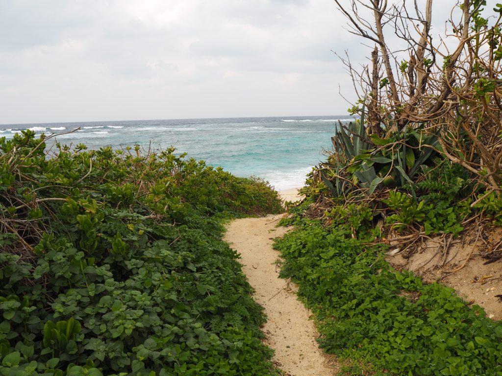 小道の先に小さなビーチがある