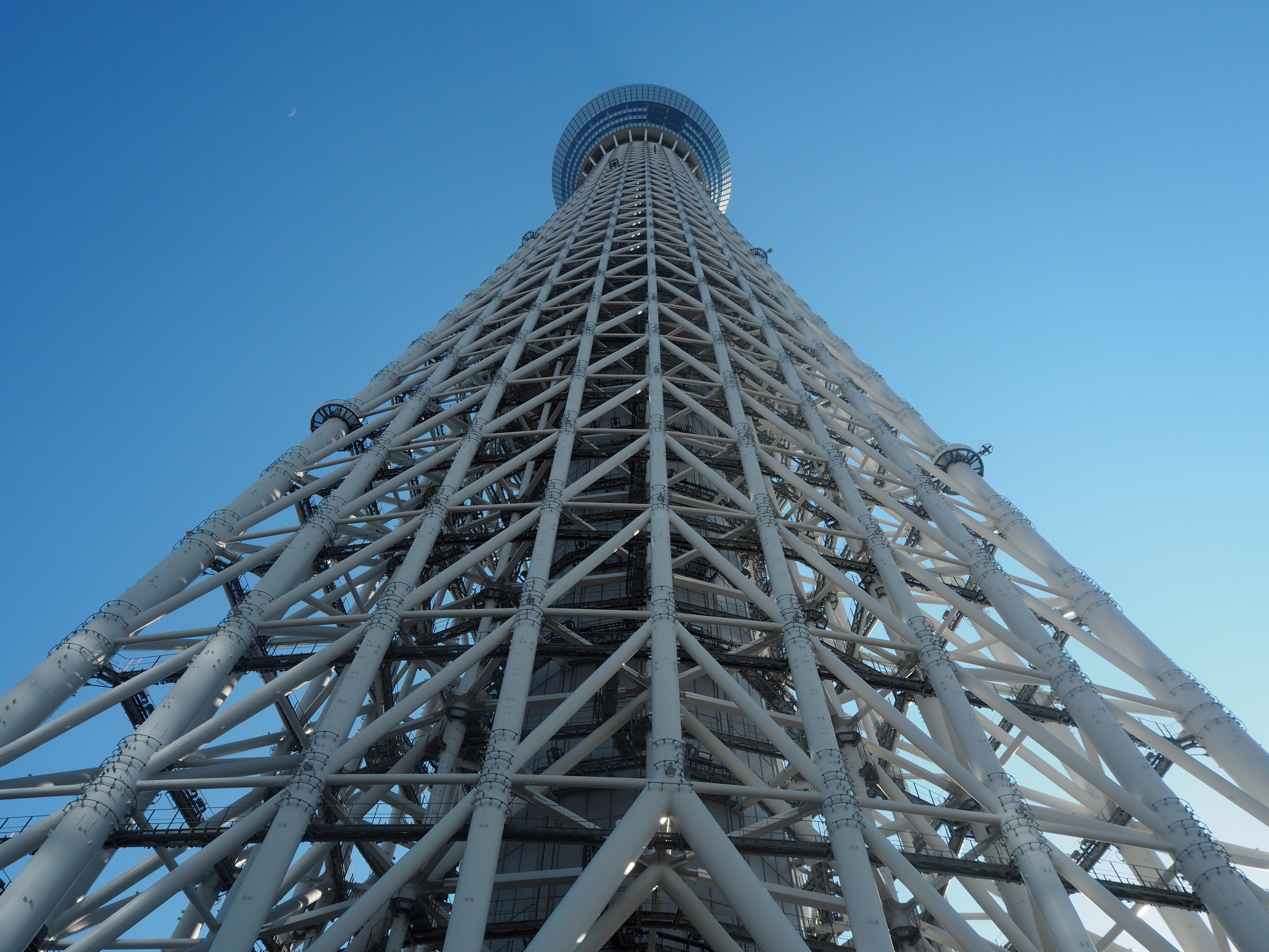 真下から見る東京スカイツリー