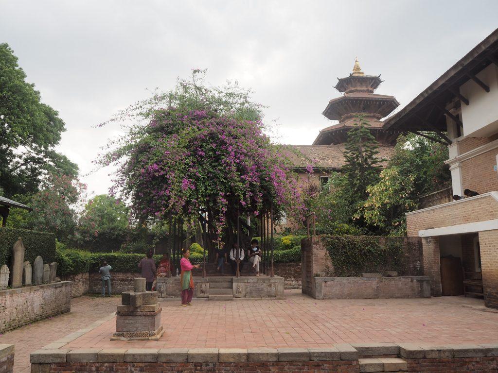 パタン博物館の中庭