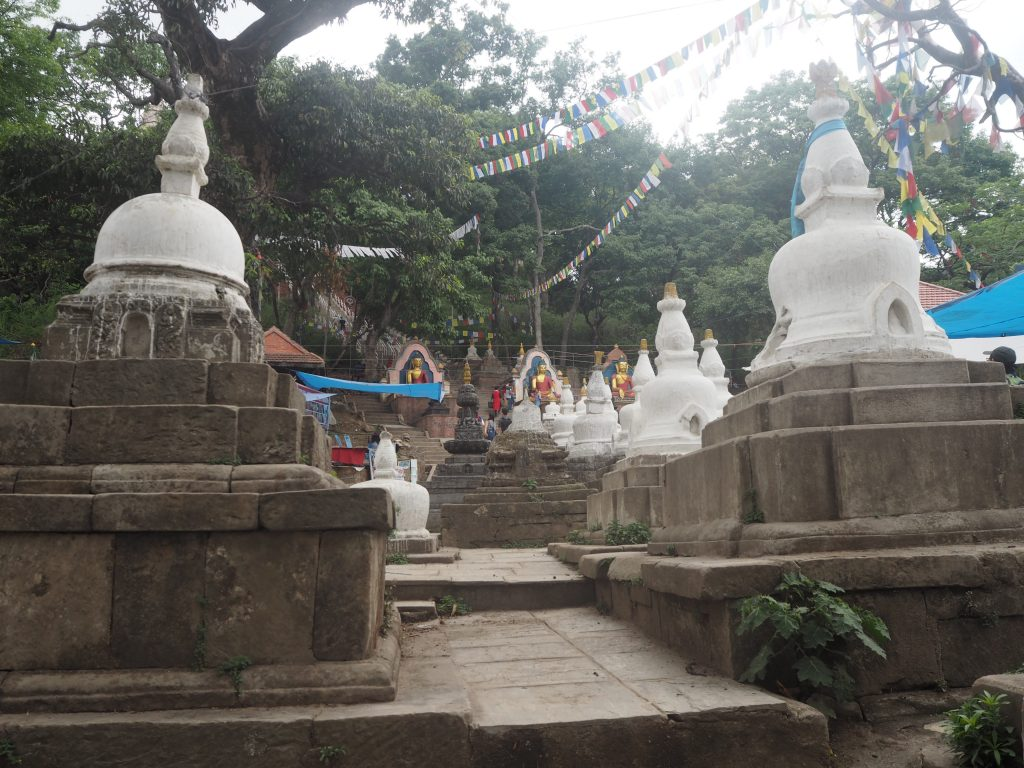 数多くの仏像が並ぶ