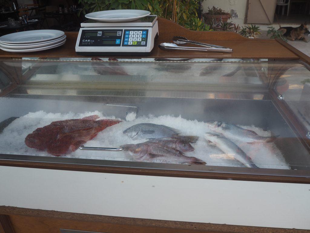 店頭に並べられた魚介類