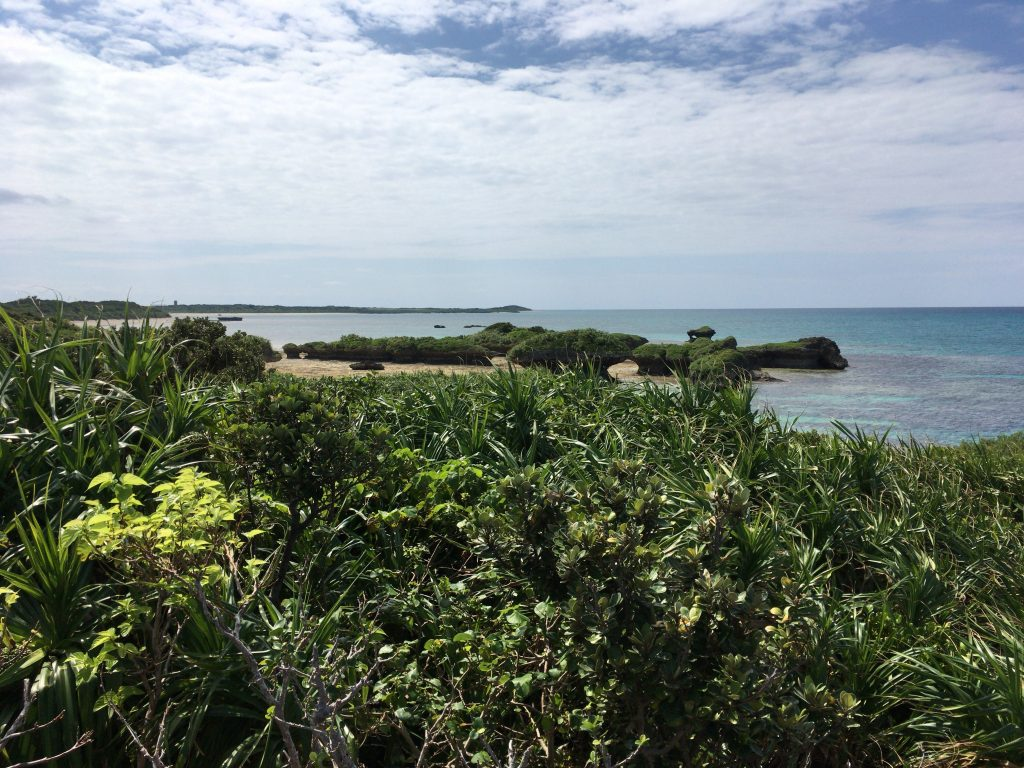 展望台からの風景(港の反対側)