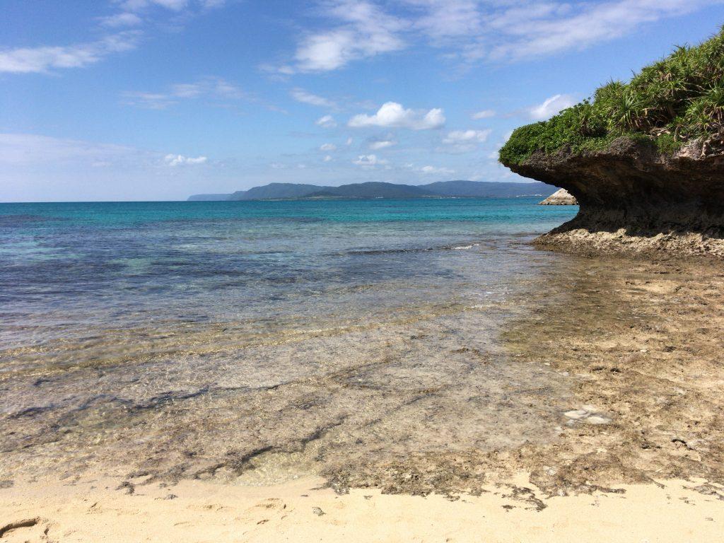 なんだか原始的な風景が広がるビーチだ
