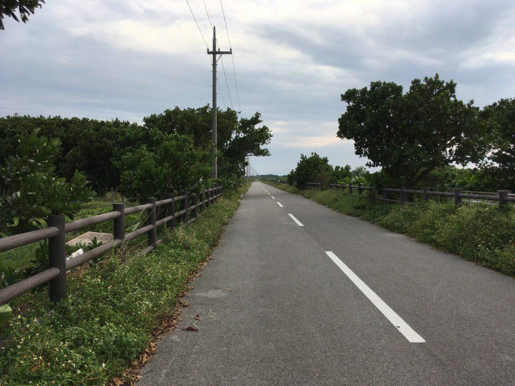 港から南へ延びる道