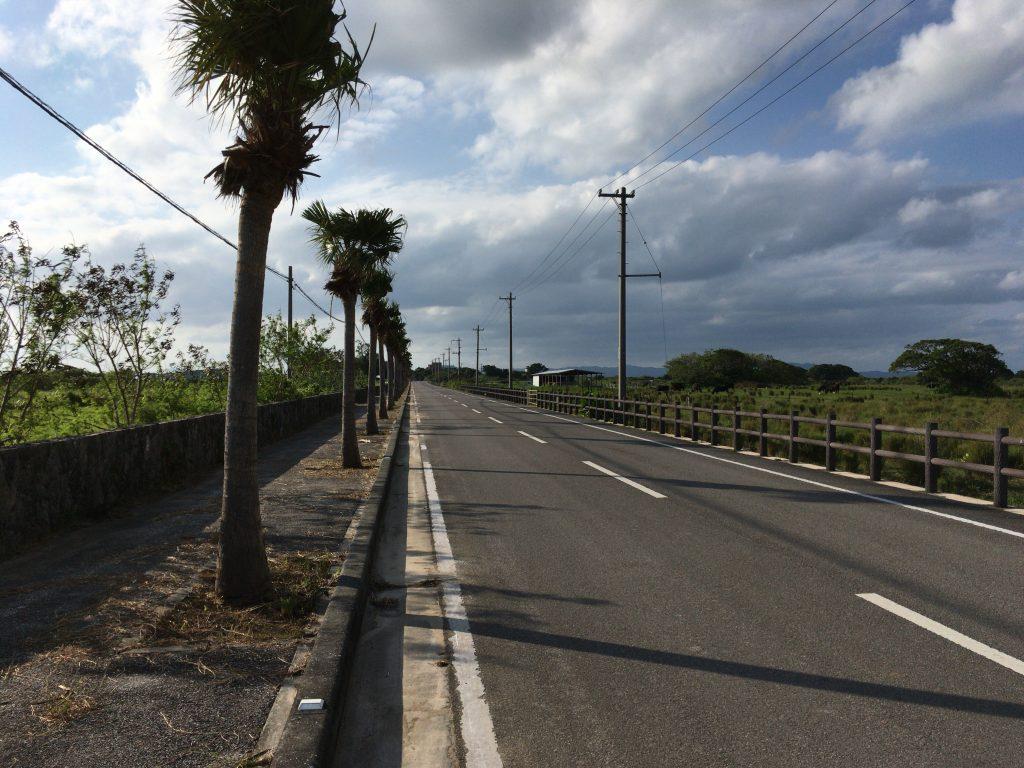 日本の道100選の県道213号線