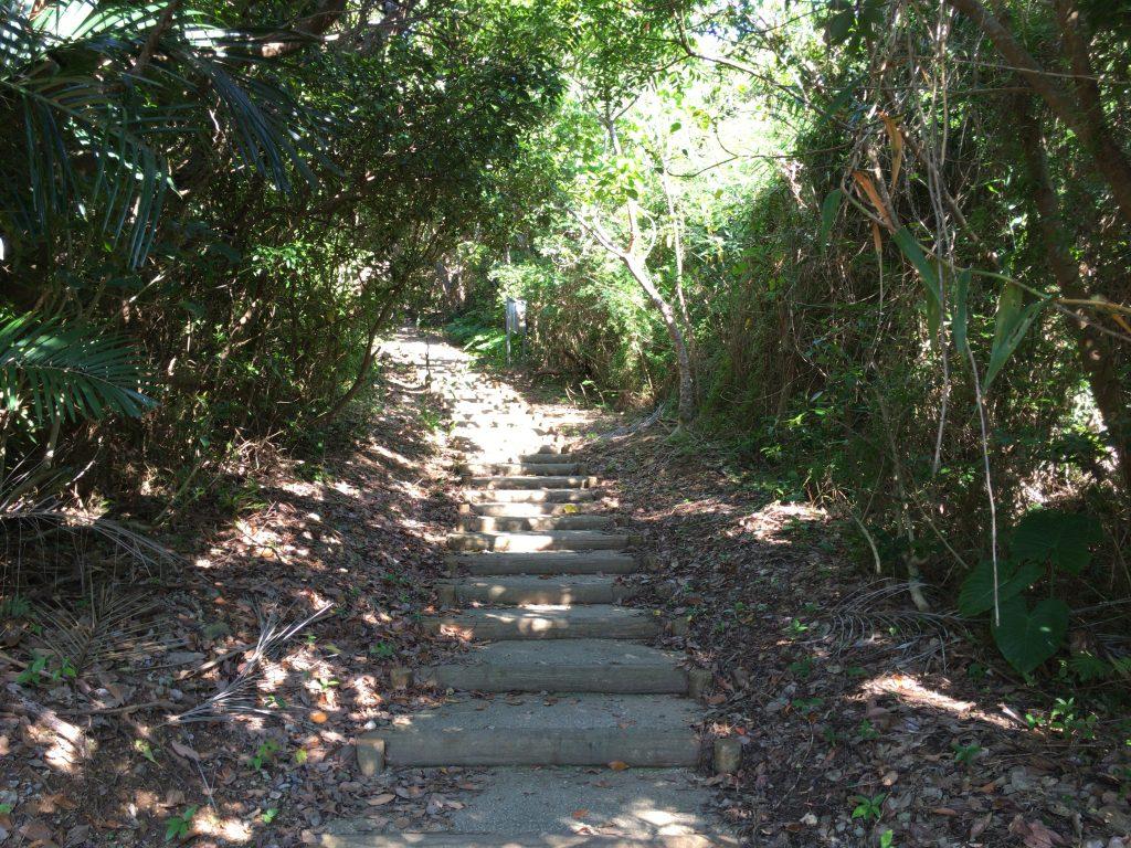 大岳(うふだき)展望台の階段