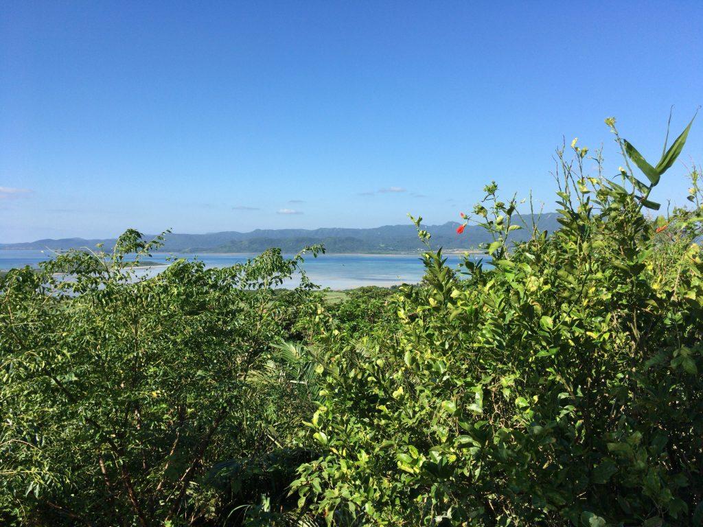 大岳展望台からの景色(西表島方面)