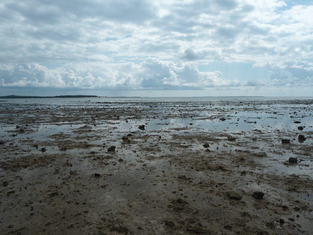 引き潮時のマンタの浜。正面には小浜島が見える