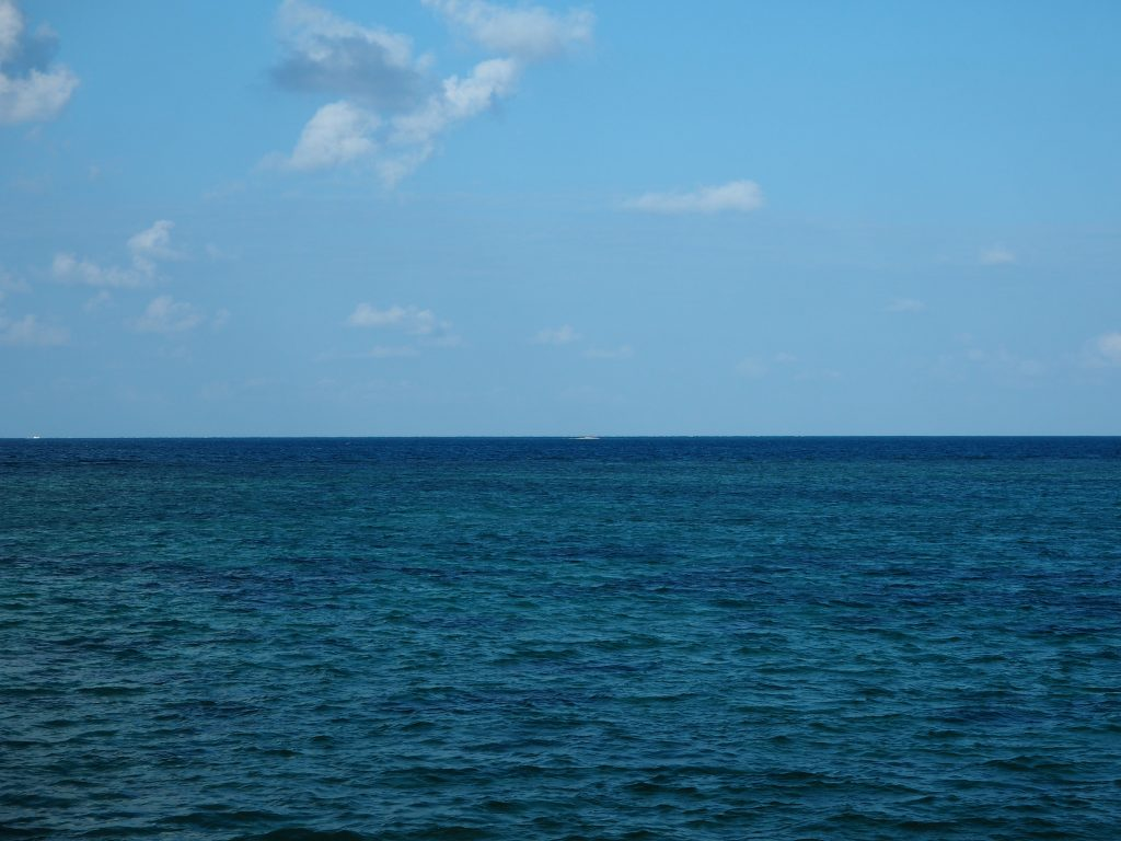 遠くにバラス島(サンゴでできた無人島)らしきものが見える