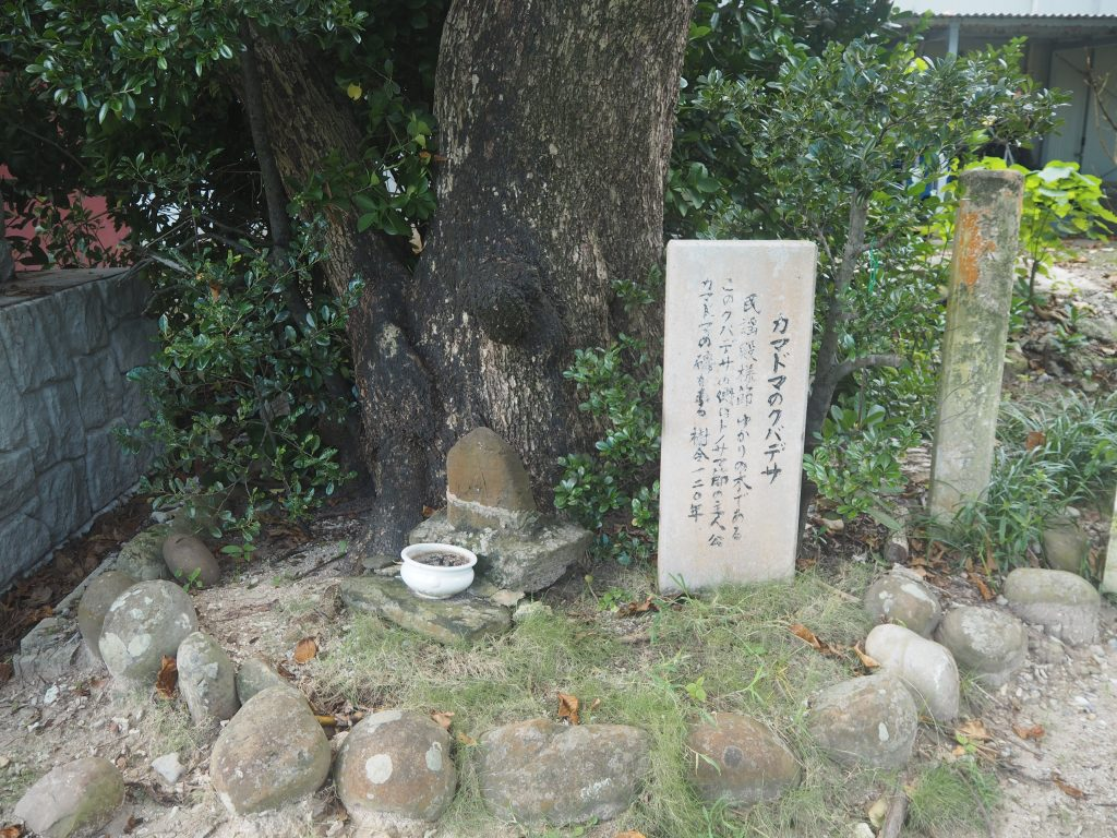 「カマドマのクバデサ」と呼ばれる大木