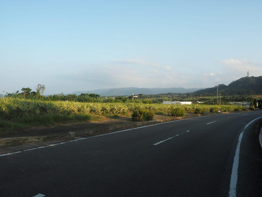 素朴な風景が広がる西表島