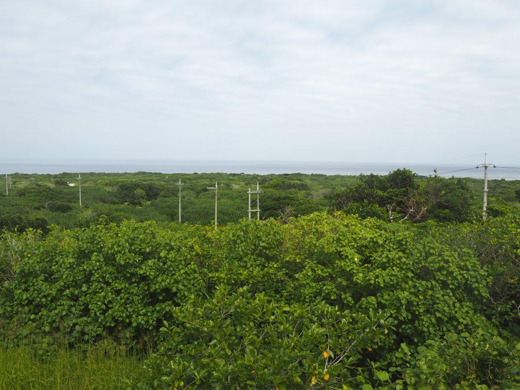 物見台から鳩間島を一望