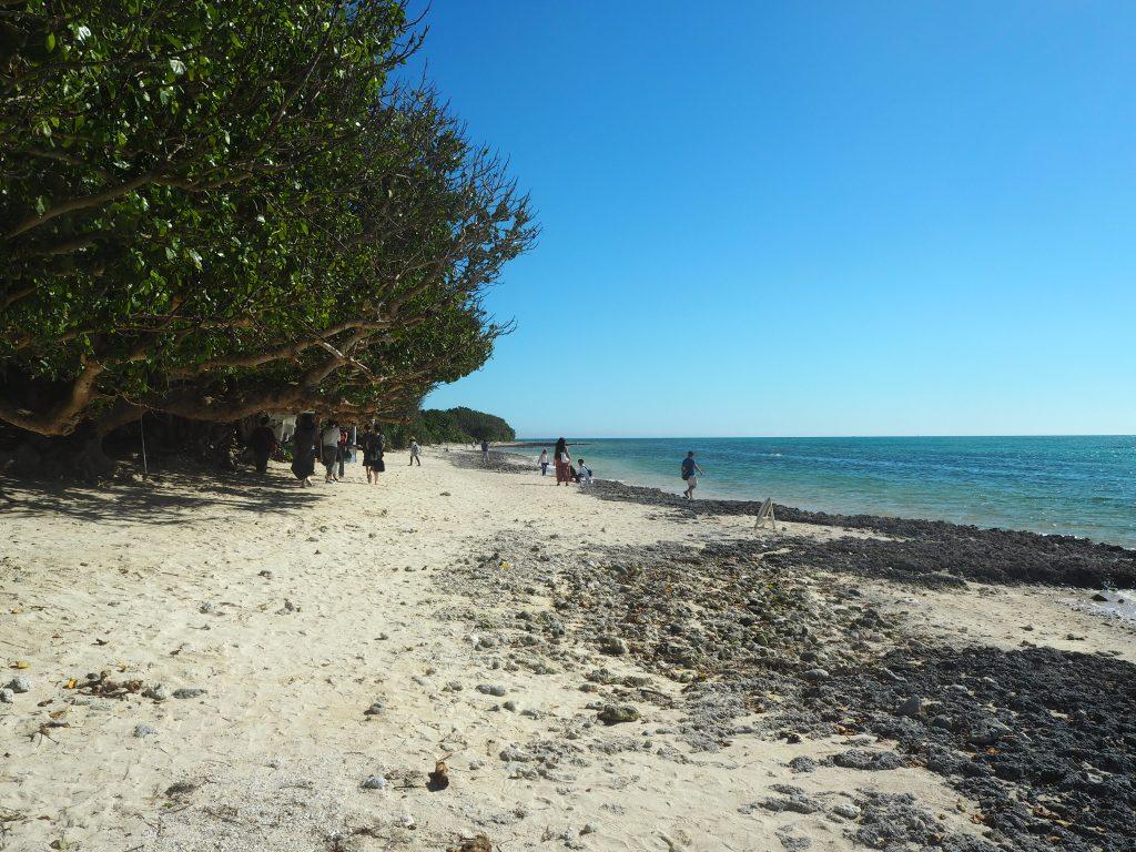 木陰でのんびりと過ごしたくなるビーチである