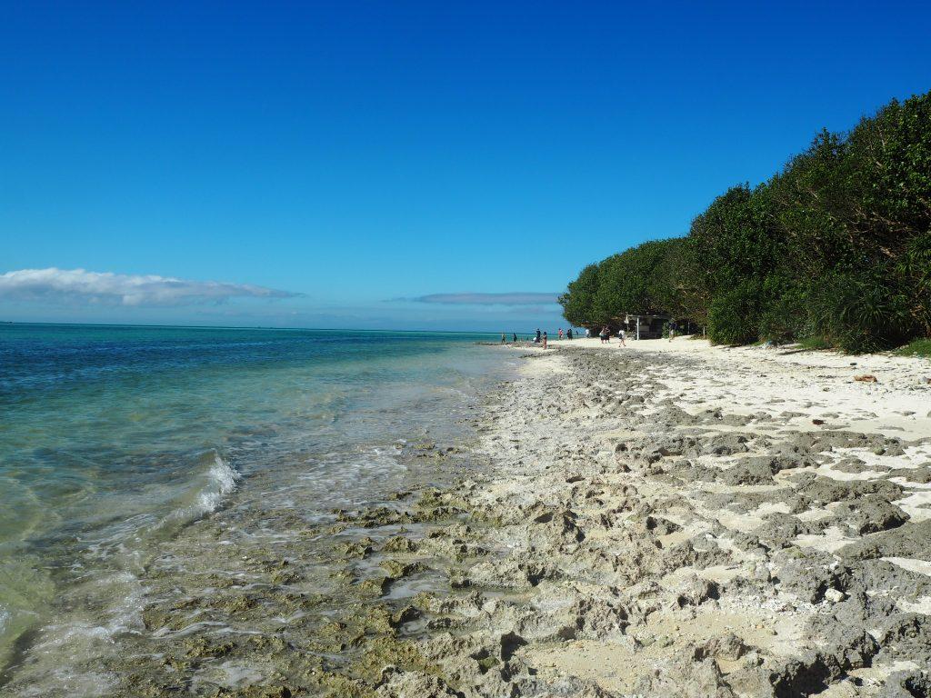 カイジ浜の全景