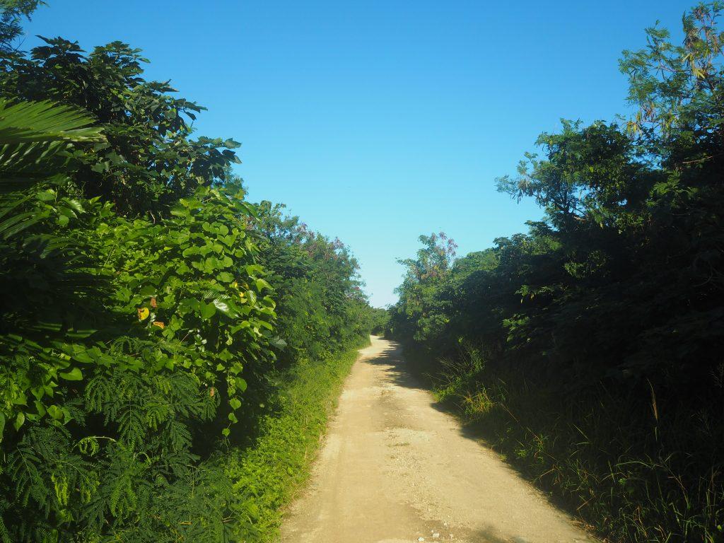 集落からアイヤル浜までの道