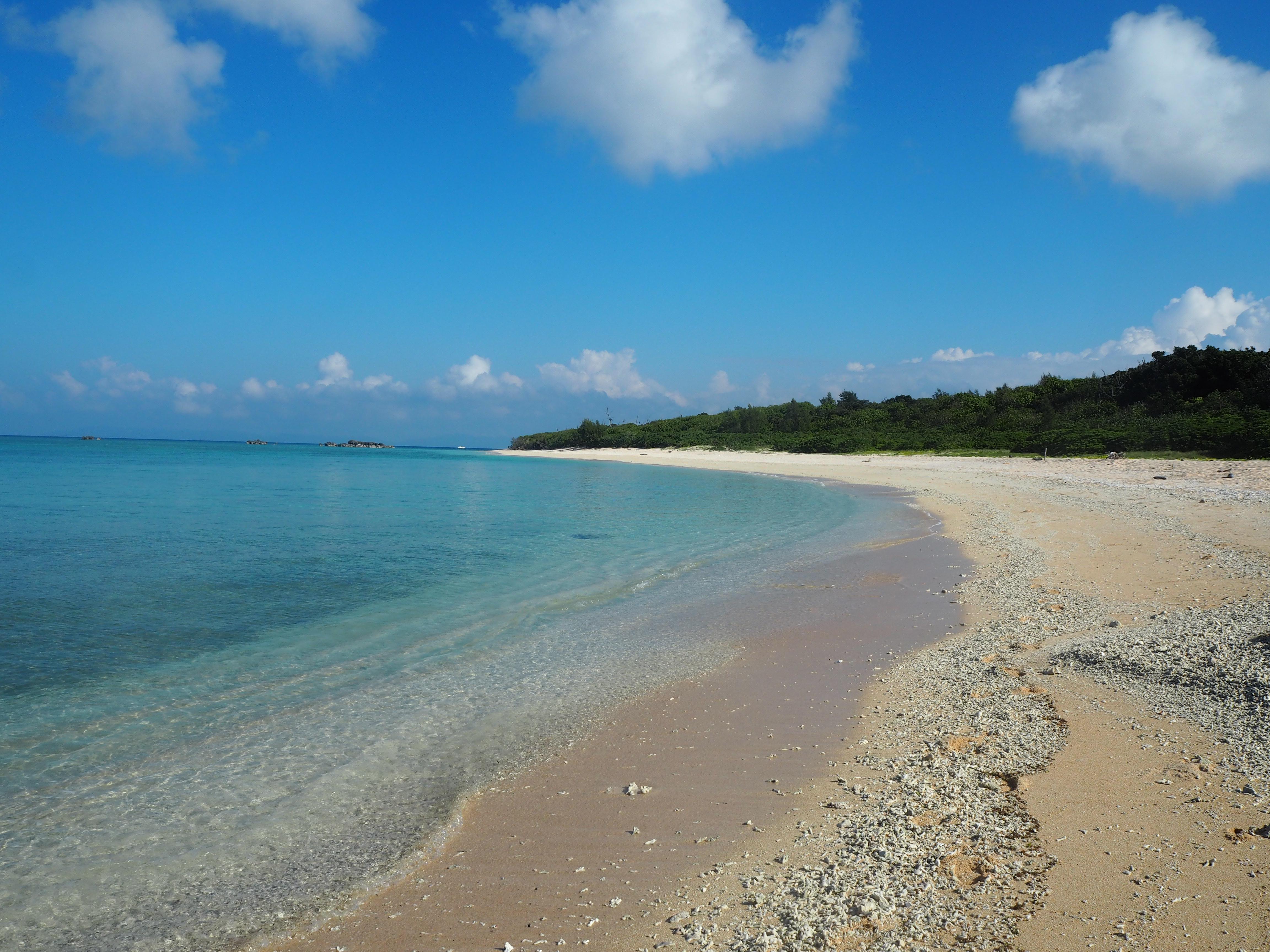 南側からペー浜を望む。砂浜のサンゴのかけらが印象的だ
