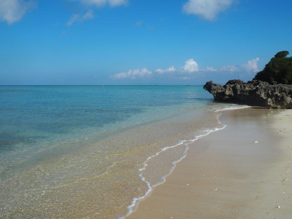 浜シタン群落にあるビーチ