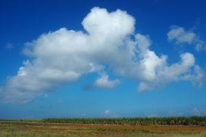 海だけでなく空の青さも印象的な波照間島