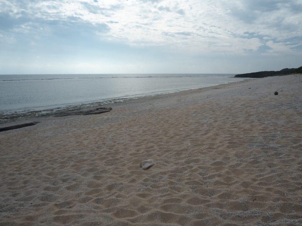 一見穏やかなビーチだが潮の流れが速いようなので気を付けよう