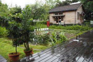 カフェから生態池と木造家屋を望む