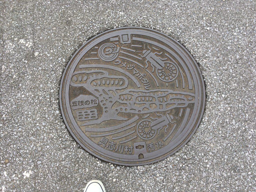 久米島のマンホール。ゴキブリに見えるがクメジマボタルである