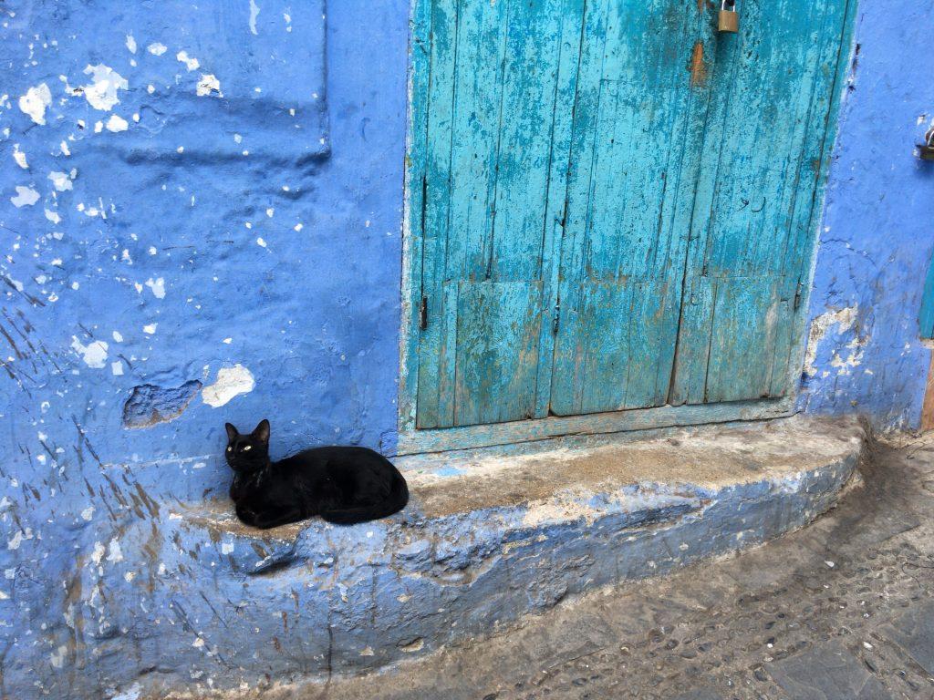 タイトル「青い街と黒い猫」