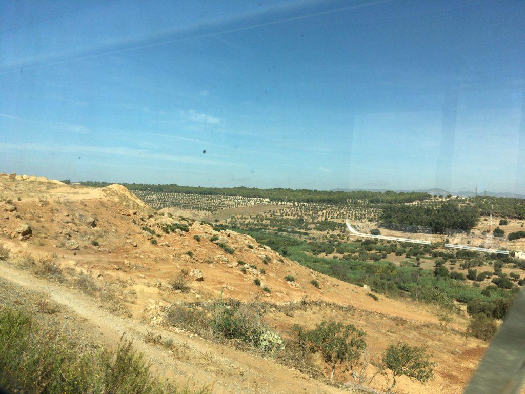 フェズからカサブランカへと向かう列車の車窓から