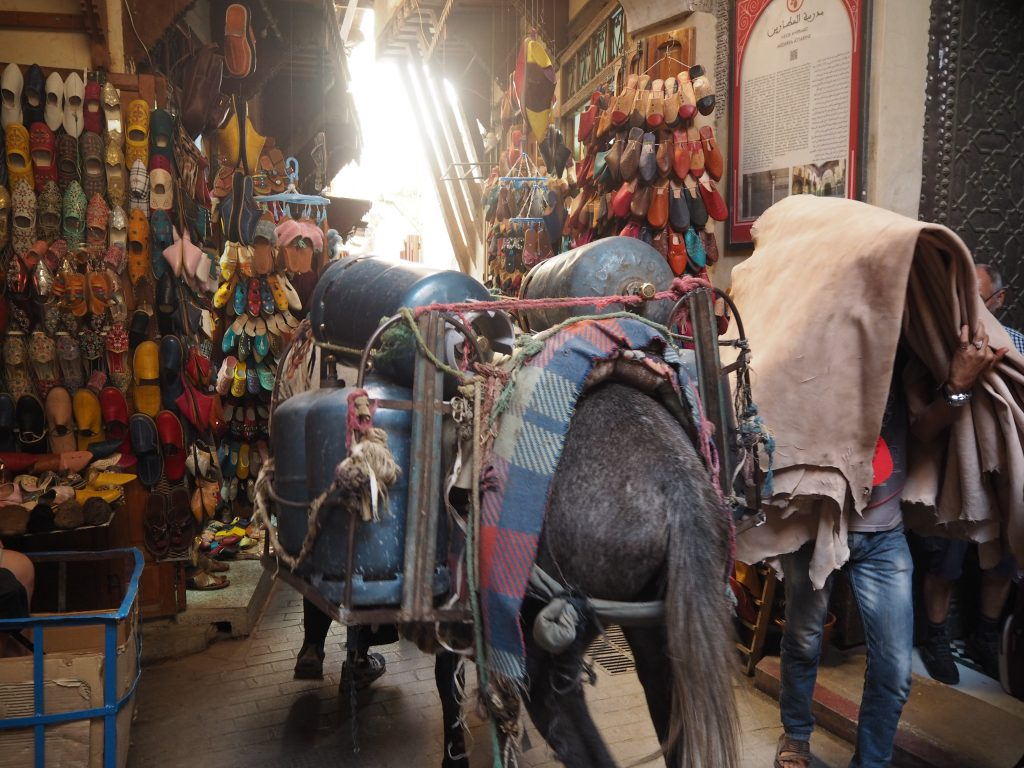車が入れないメディナの路地では荷物を運ぶ馬やロバが行き交う