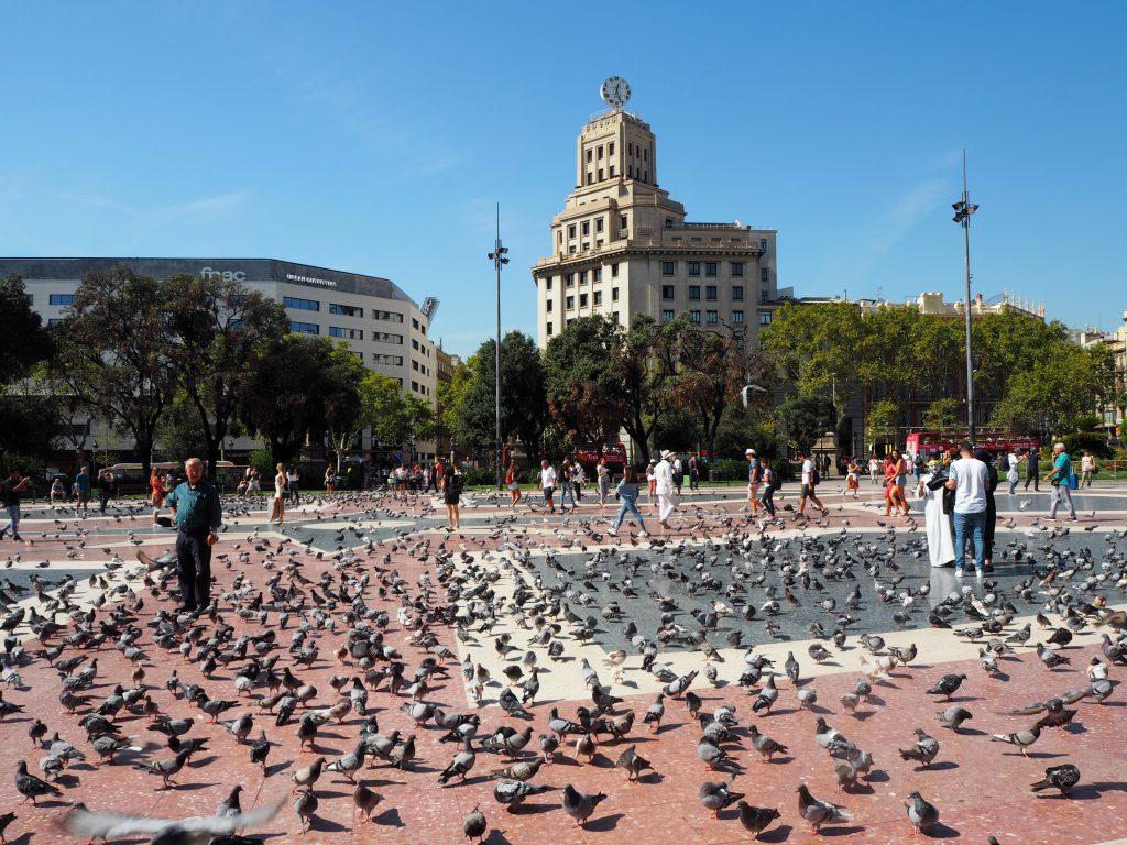 カタルーニャ広場。笑うぐらいハトがいる